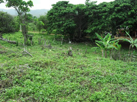 Land for Sale in Samana, Lot for Sale in Samana, Dominican Republic.